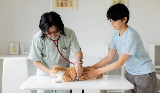 提携獣医師の先生