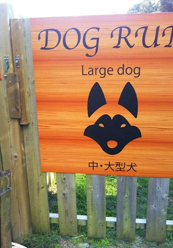 DOG RUN 改装しました。